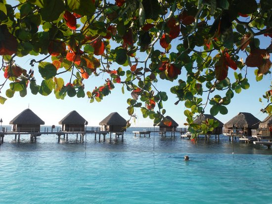 Manava Beach Resort & Spa - Moorea : Pool