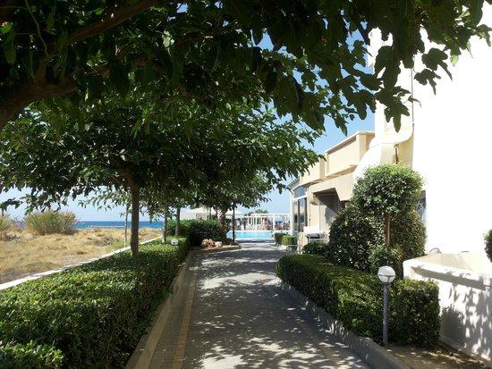 smartline Neptuno Beach: Holidays at 3*+ hotel