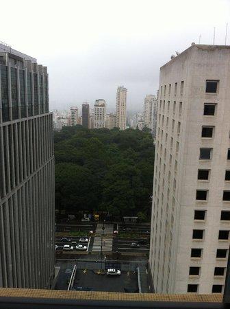 Blue Tree Premium Paulista : Vista para o Parque  Trianon