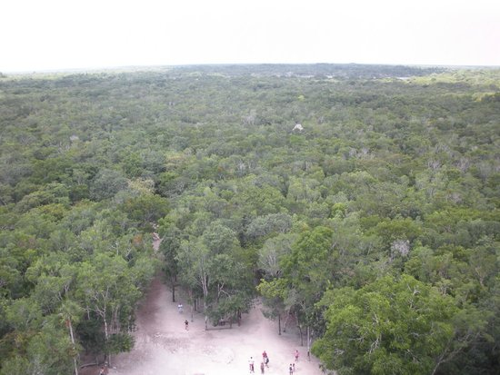 Ruinas de Coba: Visuale dalla cima della piramide