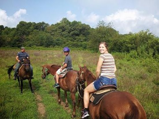 Dillard House: Horseback Riding