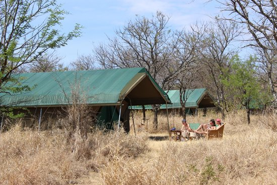 Asanja Africa: Our tents