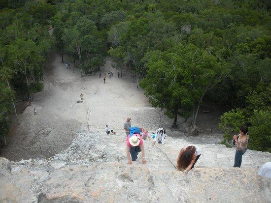 Ruinas de Coba: Visuale dalla cima della piramide alla base.