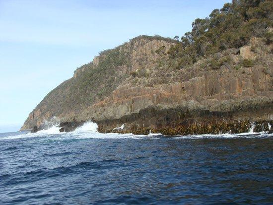 Bruny Island Cruises: formações rochosas