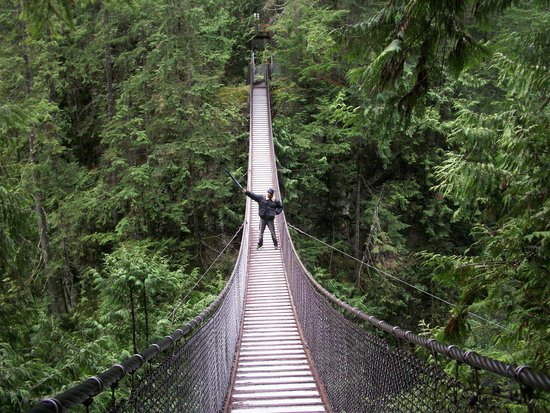 Lynn Canyon Suspension Bridge: Middle of the road