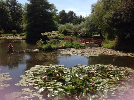 Bennetts Water Gardens: picturesque