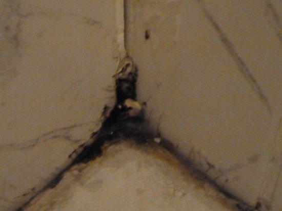 Hostal El Monasterio: moudly shower