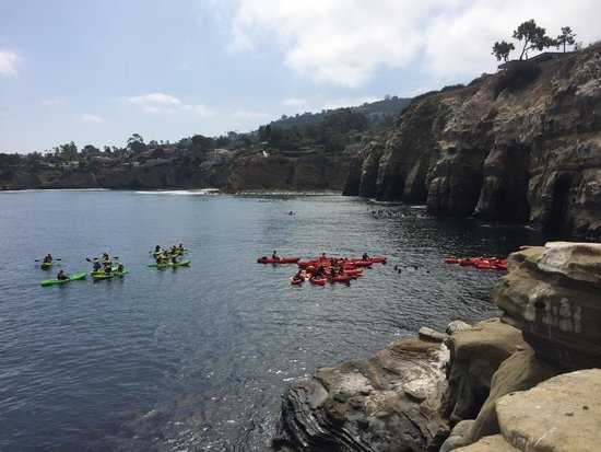 La Jolla Kayak: Saturday at La Jolla cove
