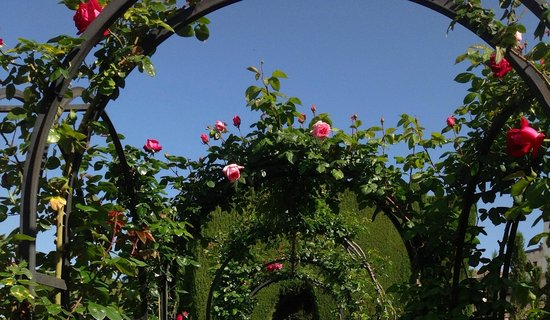 Generalife: Part of the many rose arches