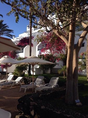 Seaside Los Jameos Playa: ������