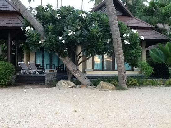 Nora Beach Resort and Spa: vue de notre villa