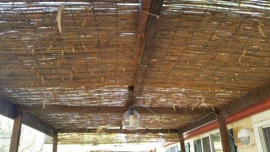Sporting Club Village : Copertura di bamboo rotta che lascia passare tutte le foglie