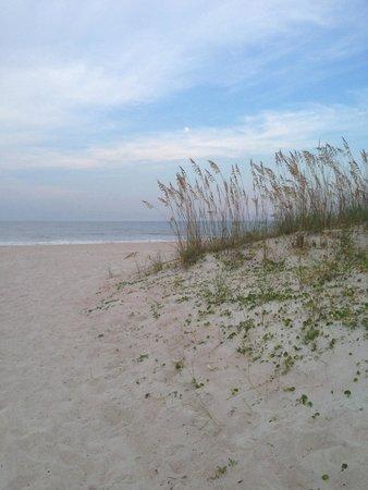 The Ritz-Carlton, Amelia Island: Evening walk on the beach