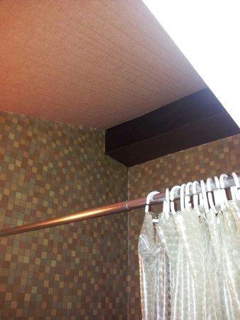 Hotel Le Rochegude : Moquette au plafond