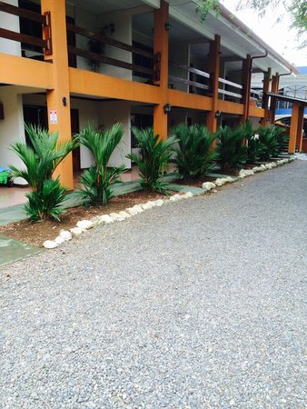 Hotel Zabamar : Frente