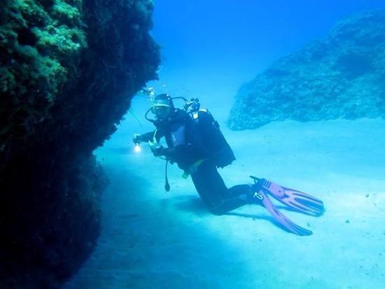 Tirrenian Diving Center: vadaro