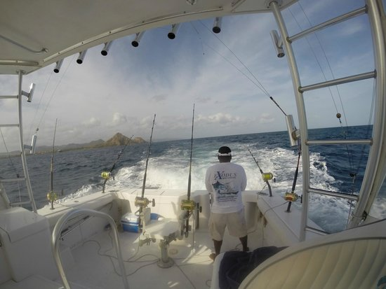 Exodus Boat Charters : checking the lines