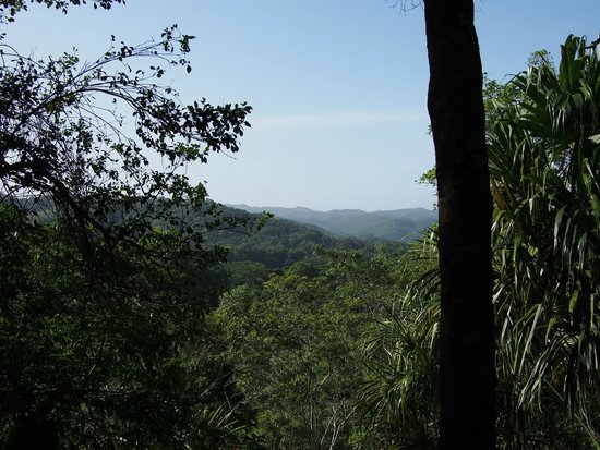 The Lodge at Chaa Creek: View from the master balcony, complete with birds singing.