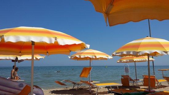 Hotel Ca' Bianca: Strand