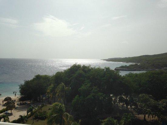 Caribbean Sea Sports Dive Shop: Beautiful Curacao!
