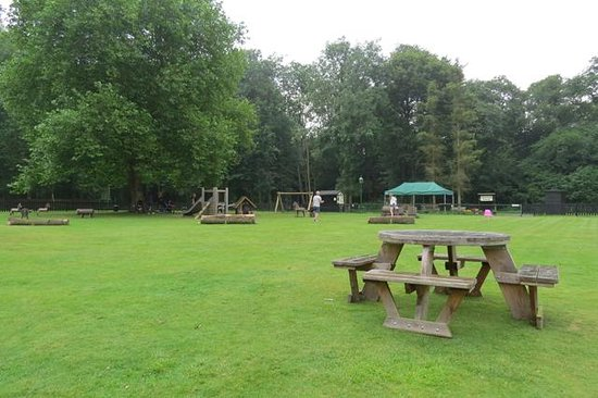 Audley End Miniature Railway: Picnic Area