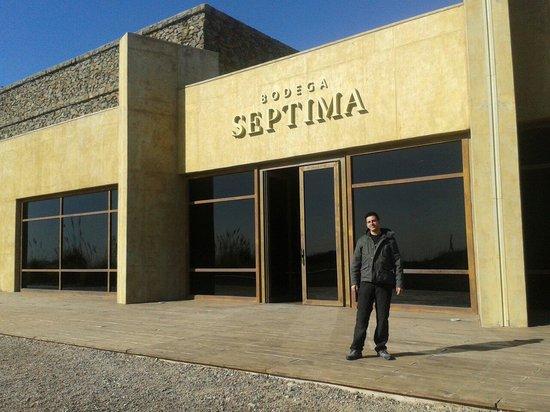 Bodega Septima: Edificio principal Bodegas Séptimo