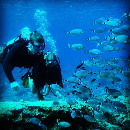 Easy Divers Cyprus: Amazing experience