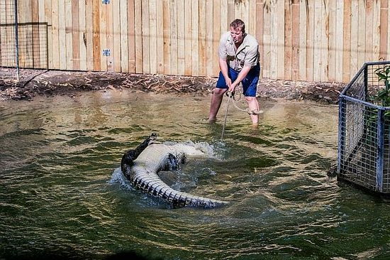 Hartley's Crocodile Adventures : Duncan and Bart