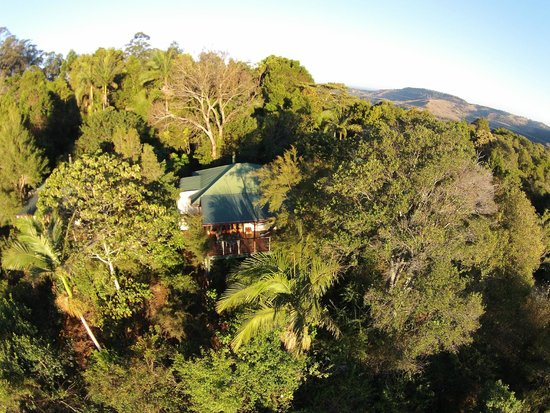LillyPilly's Country Cottages - Day Spa & Wellness Retreat: Aerial shot of a Lillypilly cottage