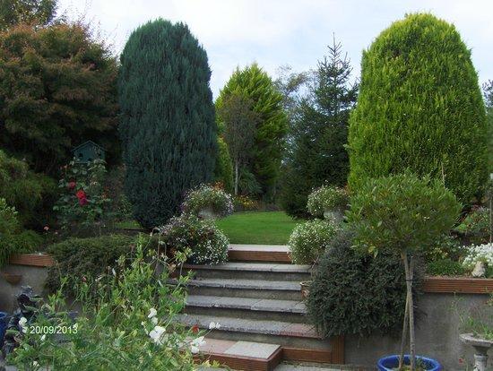Rosewood B&B: Rosewood gardens