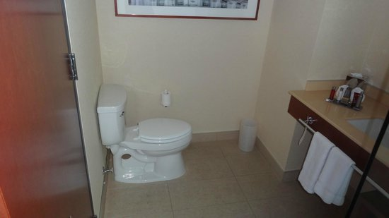 Montreal Airport Marriott In-Terminal Hotel : Salle de bain
