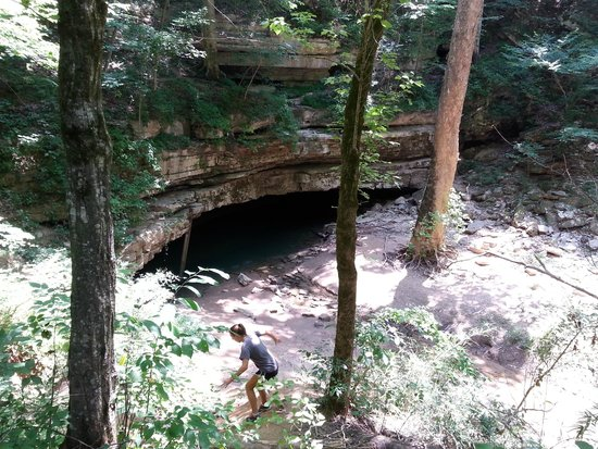 Mammoth Cave National Park: where the river and cave meet