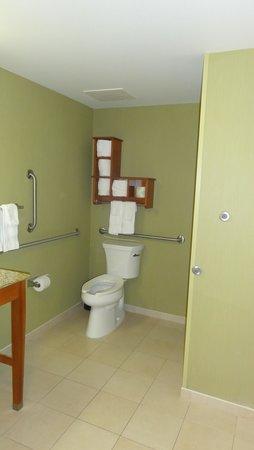 Hampton Inn & Suites Astoria: Accessible bathroom - Toilet area