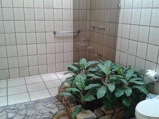 Arenal Manoa Hotel : Baño