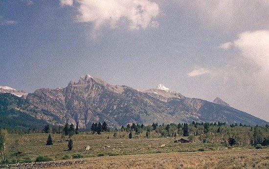 National Elk Refuge : Range - Teton Valley