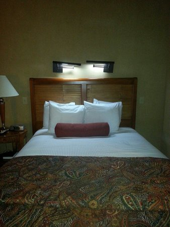 Adelaide Inn: One of the 2 beds
