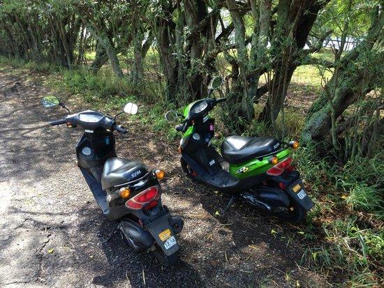 Hana Highway - Road to Hana : scooter power