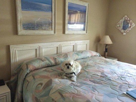Sanibel Moorings: Master Bedroom