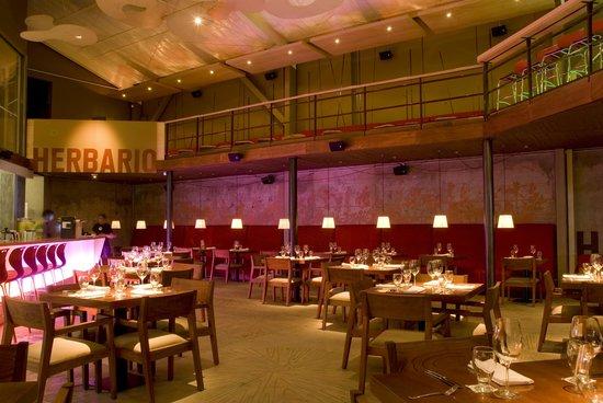 El Herbario : view of the bar
