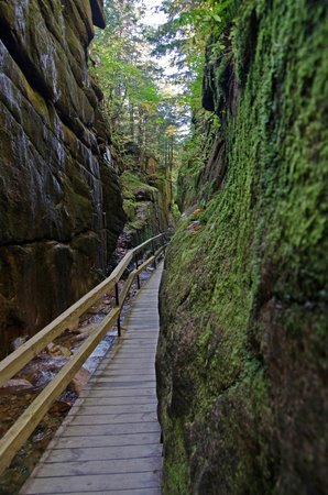 Flume Gorge: The gorge