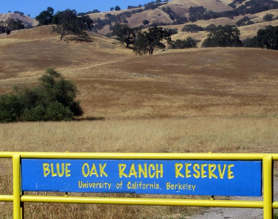 Blue Oak Ranch Reserve