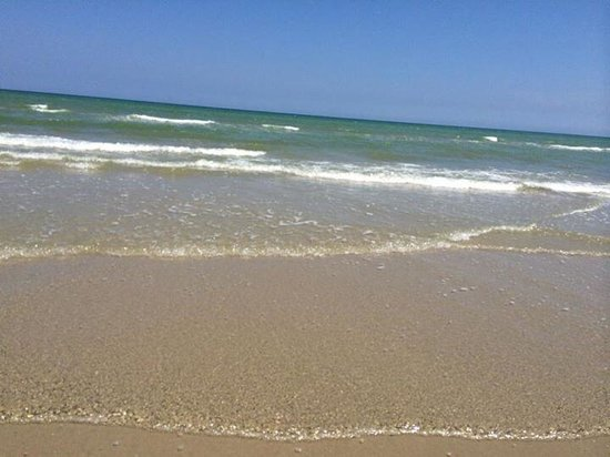 Padre Island National Seashore: Loved it here!!!