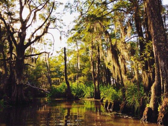 Louisiana guys