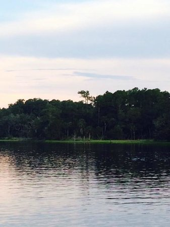 Palm Valley Fish Camp: View from dock toward the west.