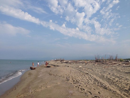Spiaggia marina di vecchiano pisa 2018 all you need to know before you go with photos - Bagno mistral marina di pisa ...