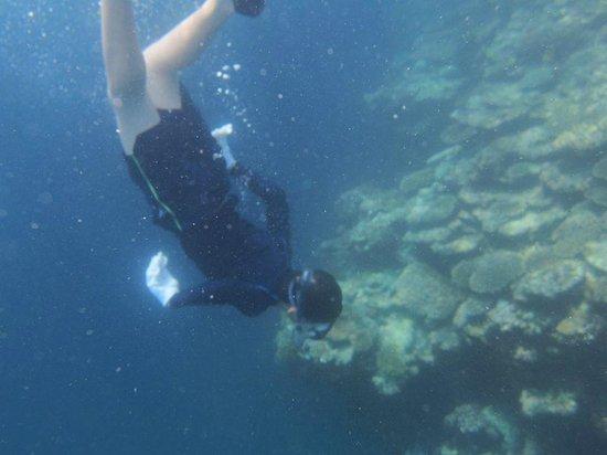 Sea Melt: 素潜りができた!と大喜びの息子