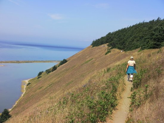 Ebey's Landing National Historical Reserve: Walking along Trail near Top