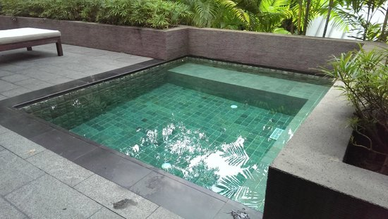 Capella Singapore: Dipping pool