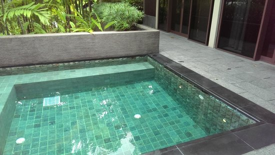 Capella Singapore: Dipping pool