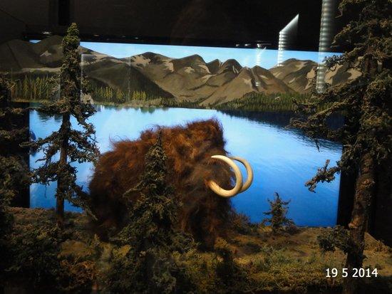 Karel Zeman Museum: One of the prehistoric scenes